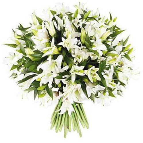 29 белых лилий