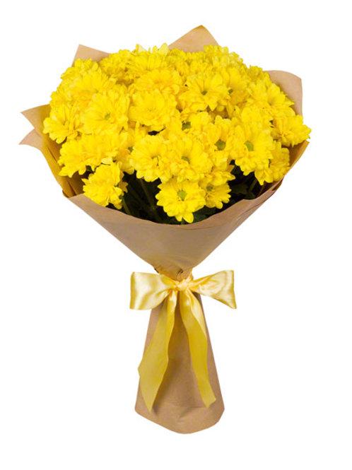 """9 желтых кустовых хризантем """"Бакарди"""""""