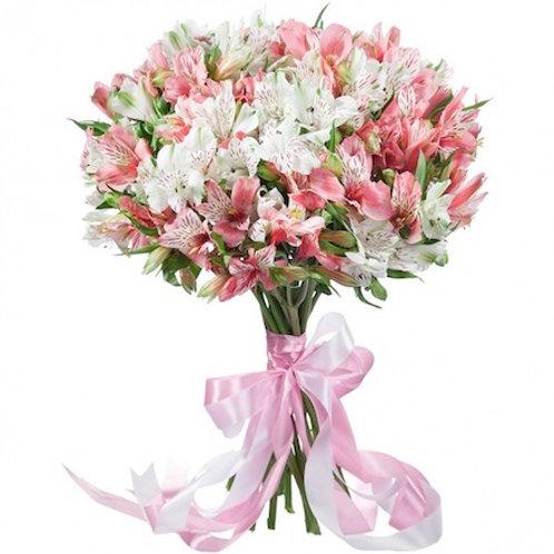 19 бело-розовых альстромерий