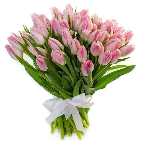 Бахромчатые розовые тюльпаны (от 50 шт.)