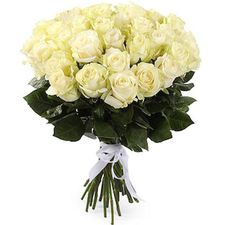 "25 роз премиум Эквадор ""Мондиаль"""