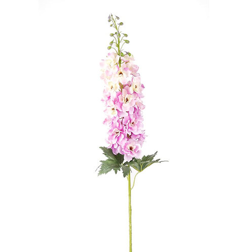 Дельфиниум розовый (от 20 шт.)