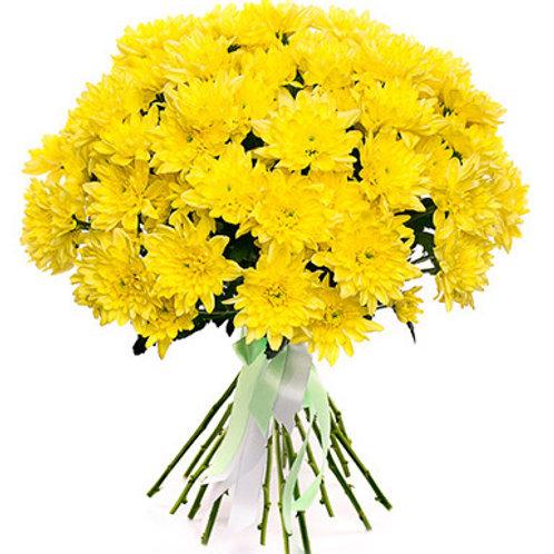 Хризантема кустовая желтая Балтика (от 5 шт.)