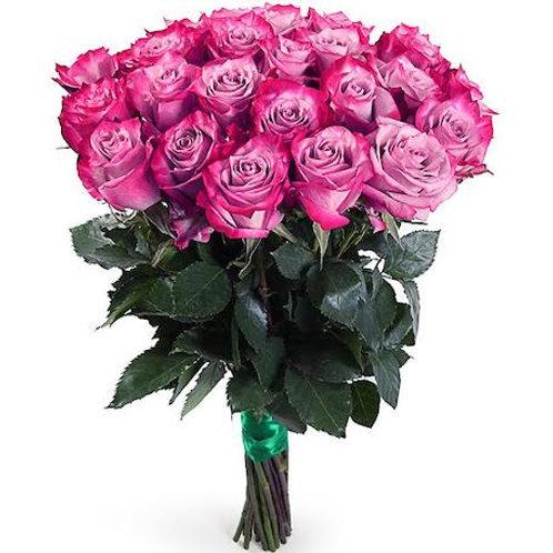 "25 роз премиум Эквадор ""Дип Пурпл"""