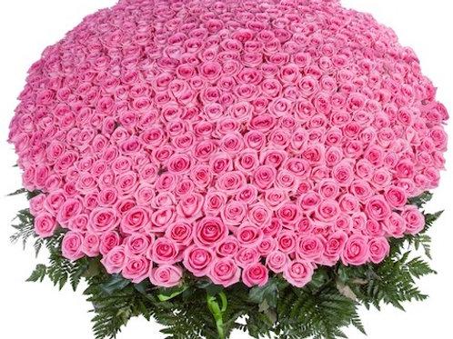 """501 роза """"Аква"""" в корзине"""