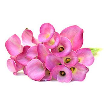 Каллы розовые (от 20 шт.)