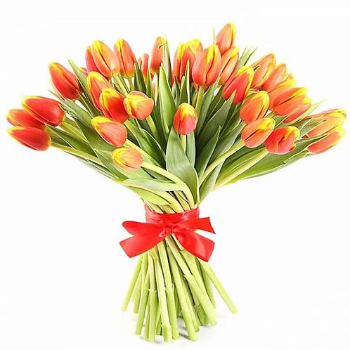 Тюльпаны красно-желтые (от 50 шт.)