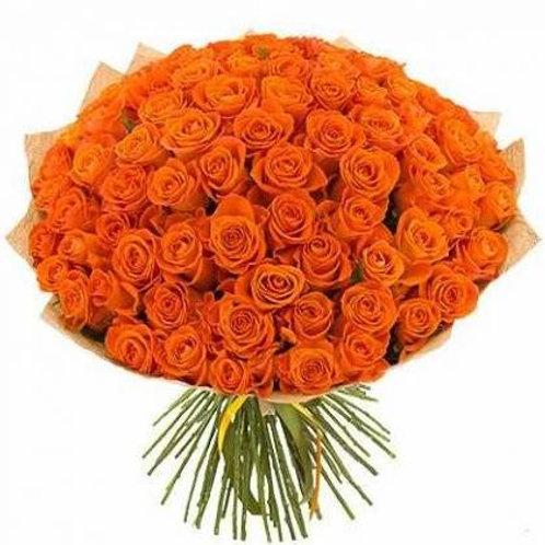 101 коралловая кенийская роза 40 см