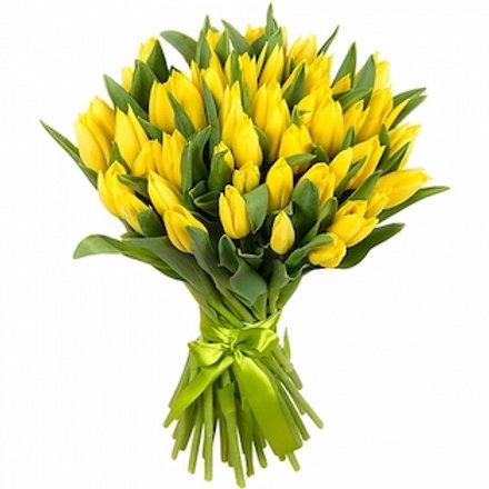 Тюльпаны желтые (от 50 шт.)
