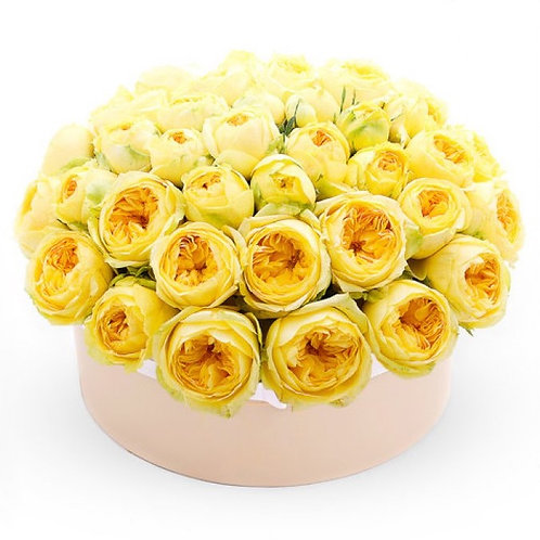 51 пионовидная желтая роза в шляпной коробке