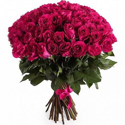 Розы малиновые Кения (от 60 шт.)