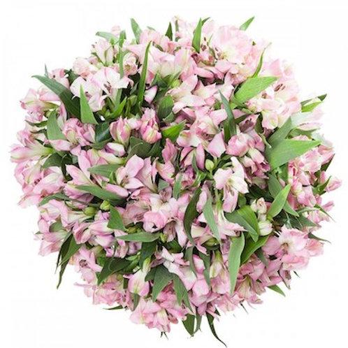 Альстромерия розовая (от 10 шт.)