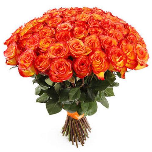 "51 роза премиум Эквадор ""Хай Мэджик"""