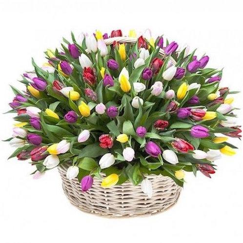"""151 тюльпан """"Микс"""" в корзине"""