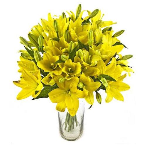 29 желтых азиатских лилий