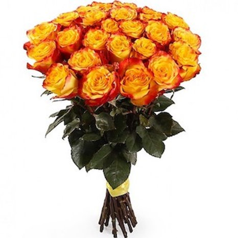 "25 роз премиум Эквадор ""Хай Мэджик"""