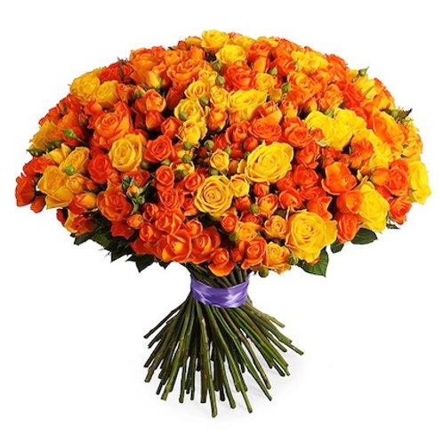 101 желто-оранжевая кустовая роза