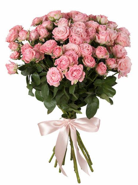 Кустовые нежно-розовые розы поштучно (от 10 шт.)
