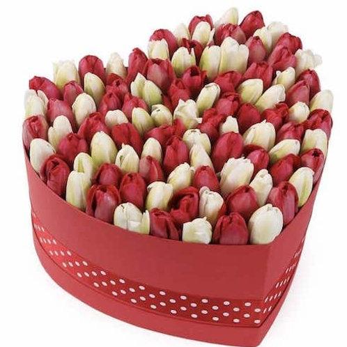 151 красный и белый тюльпан в коробке в виде сердца