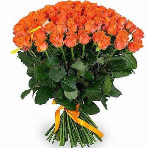 Розы коралловые Кения (от 60 шт.)