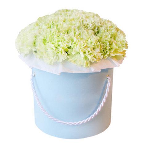 25 салатовых гвоздик в шляпной коробке