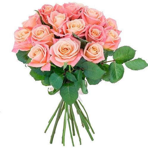 19 роз Мисс Пигги 60-70 см