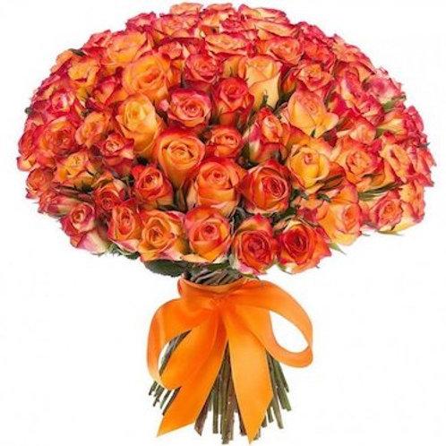 101 роза премиум Эквадор Хай Мэджик