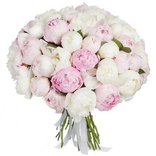 Микс из 51 белого и розового пиона