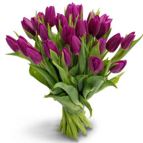 Тюльпаны фиолетовые (от 50 шт.)