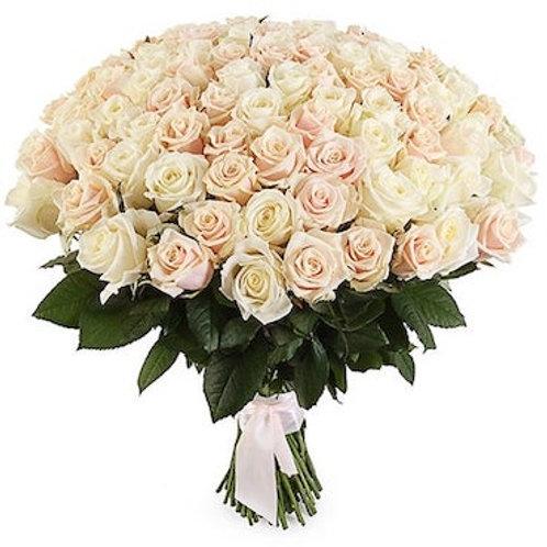 "101 роза ""Таллея"""
