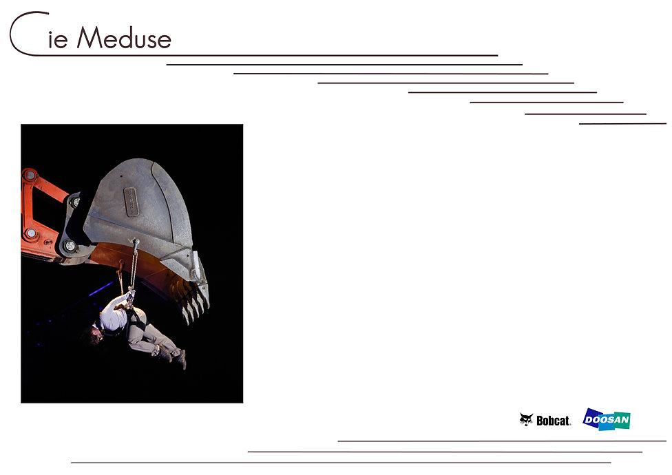 Site-meduse-bobcat-fond2016.jpg