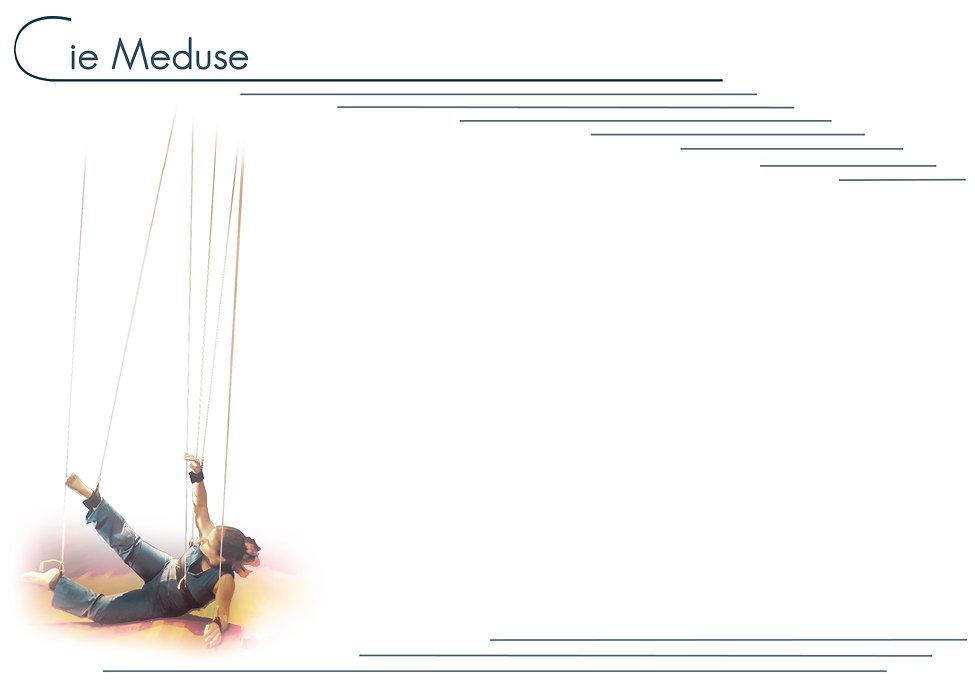 Site-meduse-SMAT-fond2016.jpg