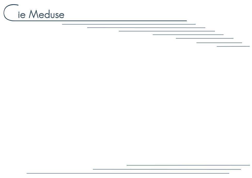 Site-meduse-accueil-fond2016_edited.jpg