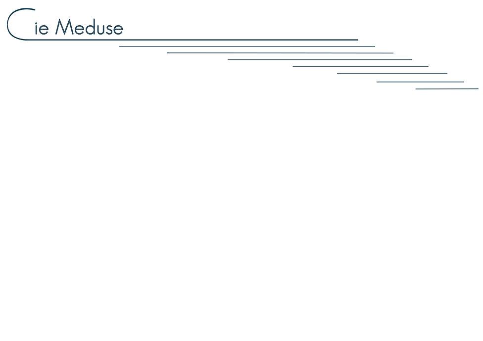 Site-meduse-actu-fond2016.jpg
