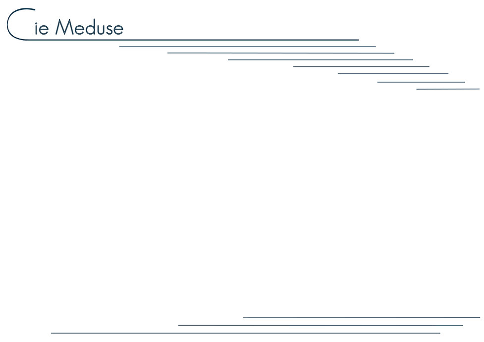 Site-meduse-accueil-fond2016.jpg