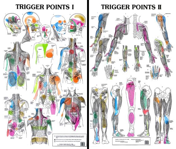 Trigger Points.png