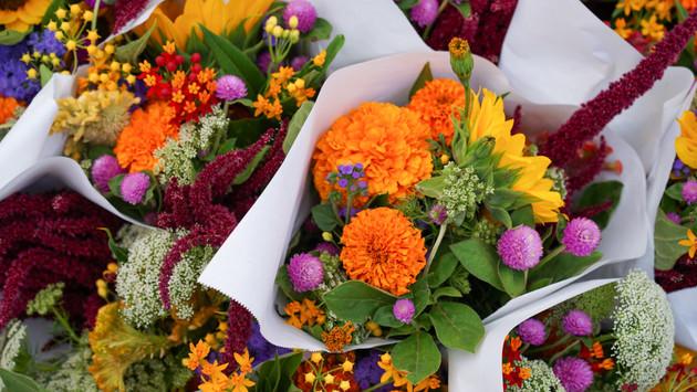 Blumen Bund