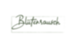 Logo_Mesa-de-trabajo-1.png