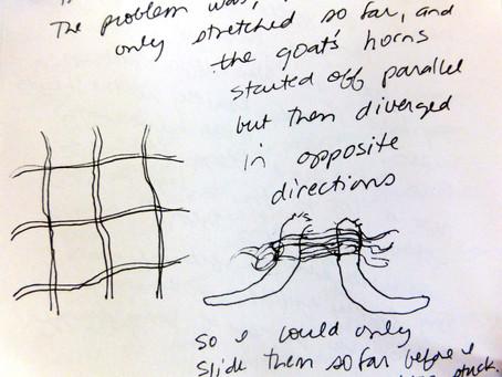 Untangling Ungulates (Volume 118, September 16, 2103 - January 6, 2014)