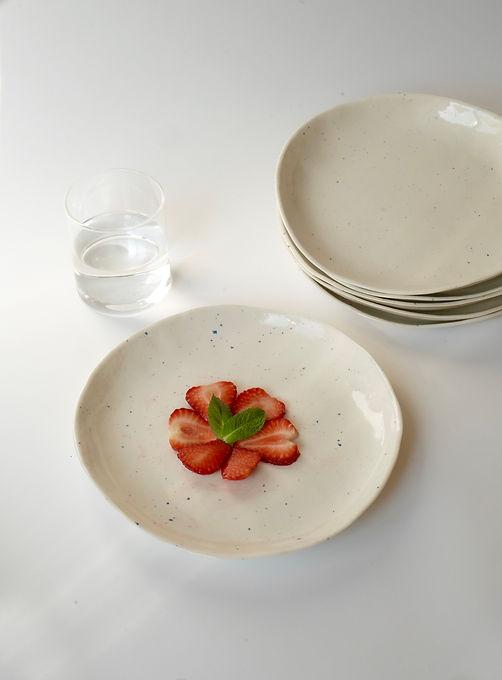 assiettes porcelaine chamottée