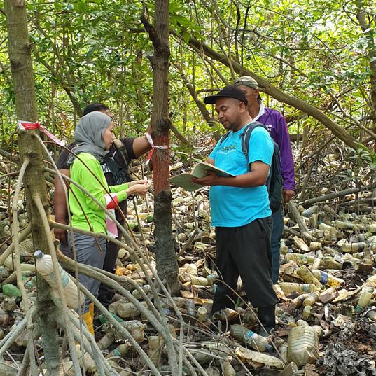 Mangrove Points Project, Klang