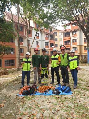 RASB Tree Safety 6.jpg