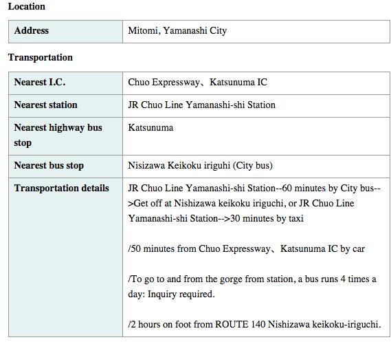 Nishizawa directions