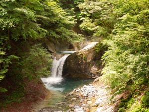 Cool Summer Hiking Yamanashi