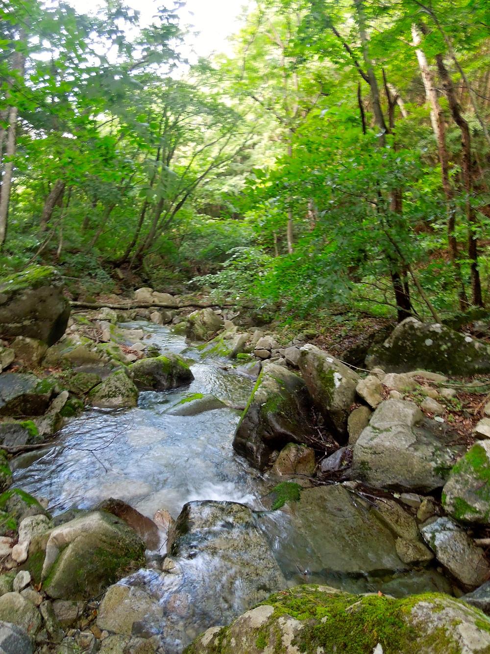 Misaka hiking
