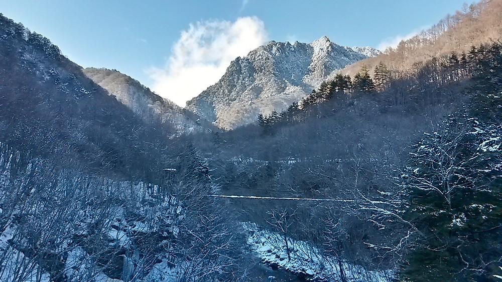 Nishizawa winter paradise