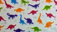 Colourful Dinosaurs