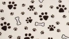 Pawprints & Bones