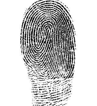 fingerprint-1382652_640.jpg