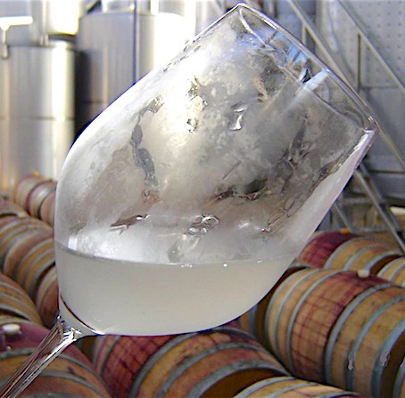 Portuguese White Wines